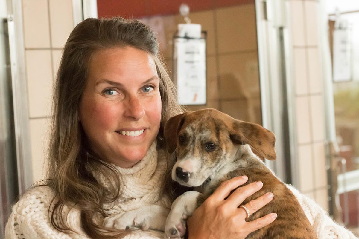 Amy Gray Puppy