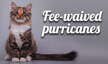 Fee-waived purricanes