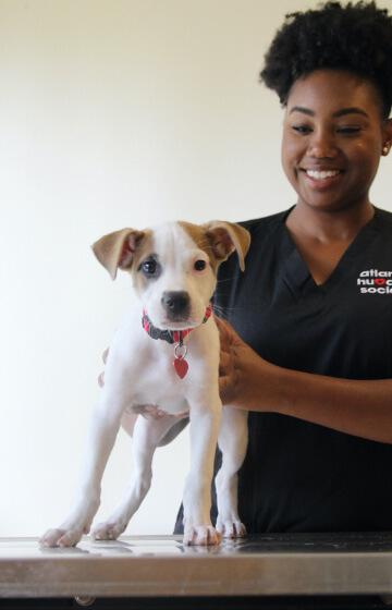 black woman holding puppy